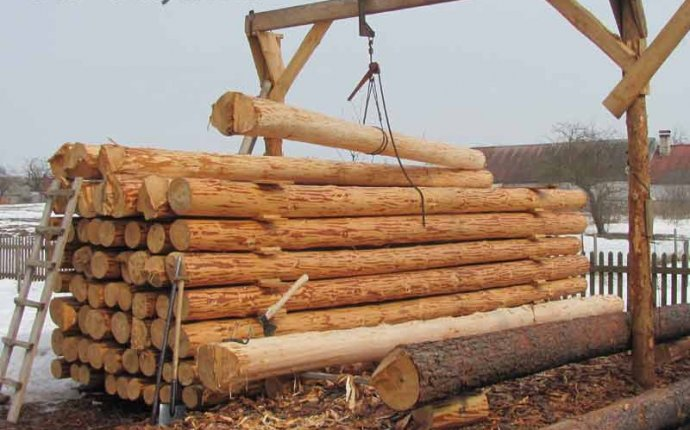Заготовка леса для сруба